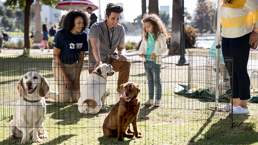 homes-for-dogs-adoption-event